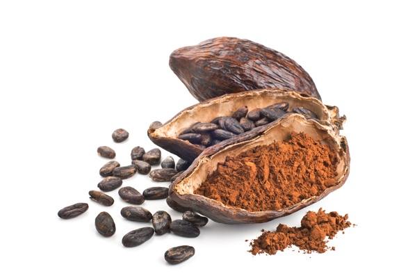 Pedal Pops Cocoa